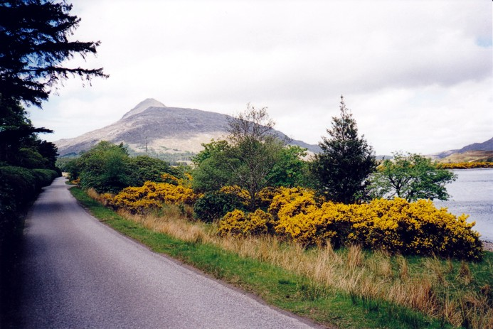 Road to Lochmore Lodge